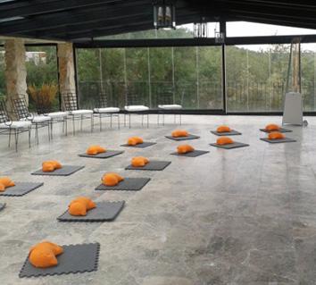 Talleres y cursos en Madrid EMPRESA Y MEDITACIÓN